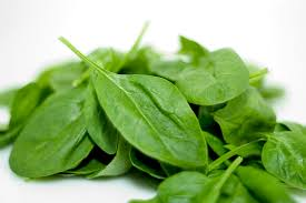 "Spinach is considered to be so healthy for us humans that it's sometimes referred to as ""superfood"", for cats, though, spinach wouldn't make a healthy treat."